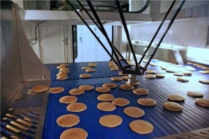 Robots Food industry 2