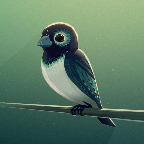 Bird Mg